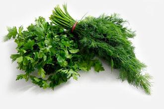 Выращивание зелени на продажу.