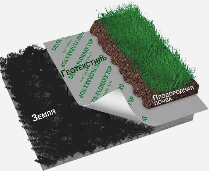 подготовка почвы под рулонный газон правильно подготовится
