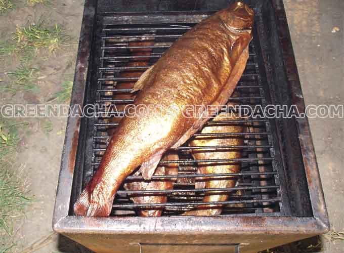 Рецепты копчения мяса сала птицы рыбы колбасы