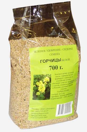 Как сажать семена горчицы для оздоровления огорода 62